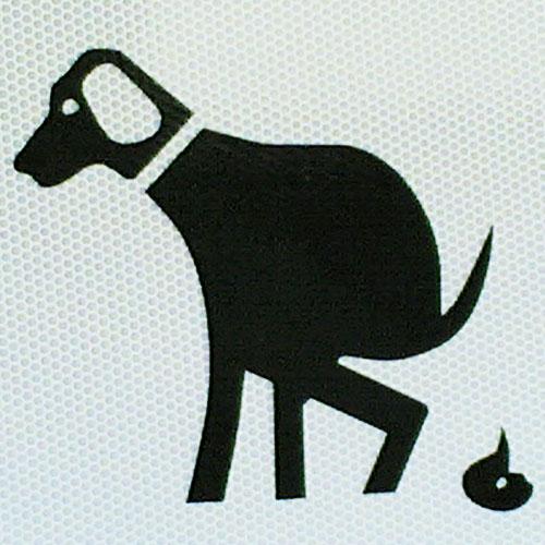 Hund Frisst Tapete An Was Tun : Hund hat Durchfall – was tun ? // Rottweiler-Hunde.com